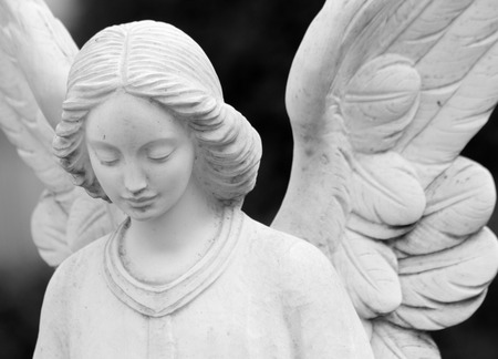 Photo for close up of winged angel statue  - Royalty Free Image