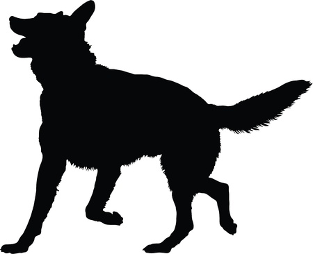 Photo for A silhouette image of a German Shepherd dog in an active pose  - Royalty Free Image