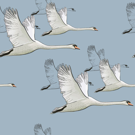 Illustration for illustration of Seamless pattern of drawing Flying Swans. Hand drawn, doodle graphic design with birds. Wrapping paper, wallpaper, backdrop. - Royalty Free Image