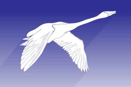 Illustration for Vector illustration of silhouette swan vector icon. flying swan with shadow sign on blue background. swan icon for web and app. - Royalty Free Image