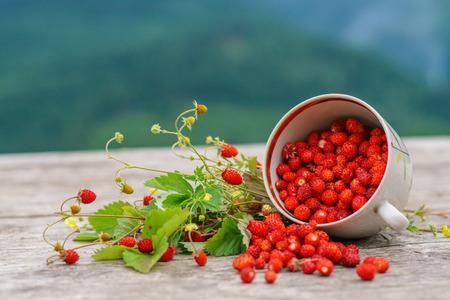 Foto de Fresh wild forest strawberry on rustic wood table with mountains on background. - Imagen libre de derechos