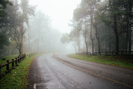 Photo for Road through forest with fog and misty countryside in thailand raining day - Royalty Free Image