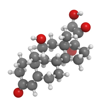 Cortisol (hydrocortisone) stress hormone, molecular model. Atoms are represented as spheres with conventional color coding: hydrogen (white), carbon (grey), oxygen (red)