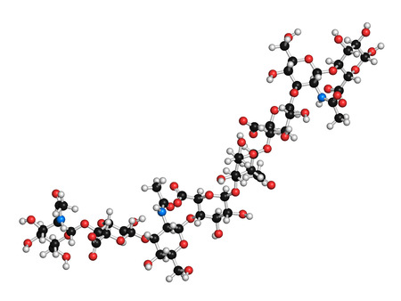 Foto de Hyaluronan (hyaluronic acid, hyaluronate) glycosaminoglycan molecule, short fragment. Part of extracellular matrix. Used as tumor marker. Used in treatment of osteoarthritis and as a cosmetic filler to treat wrinkles. Atoms shown as color-coded spheres. - Imagen libre de derechos