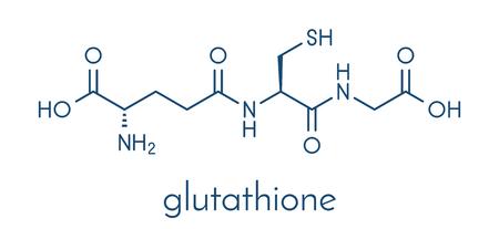 Illustration pour Glutathione (reduced glutathione, GSH) endogenous antioxidant molecule. Skeletal formula. - image libre de droit