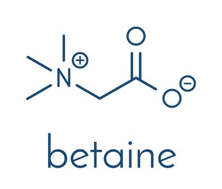 Illustration pour Betaine (glycine betaine, trimethylglycine) molecule. Originally found in sugar beet (Beta vulgaris). Skeletal formula. - image libre de droit
