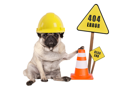 Foto de pug dog with yellow constructor safety helmet and cone and 404 error and dead end sign on wooden pole, isolated on white background - Imagen libre de derechos