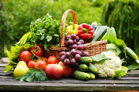 Photo pour Fresh organic vegetables in wicker basket in the garden - image libre de droit
