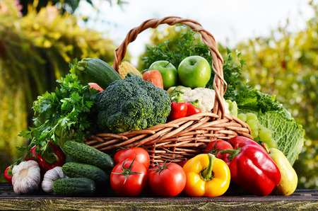 Photo pour Wicker basket with assorted raw organic vegetables in the garden. - image libre de droit