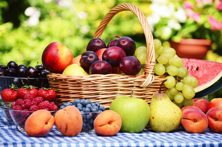 Photo for Basket of fresh organic fruits in the garden - Royalty Free Image
