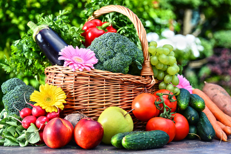 Foto für Variety of fresh organic vegetables and fruits in the garden. Balanced diet - Lizenzfreies Bild