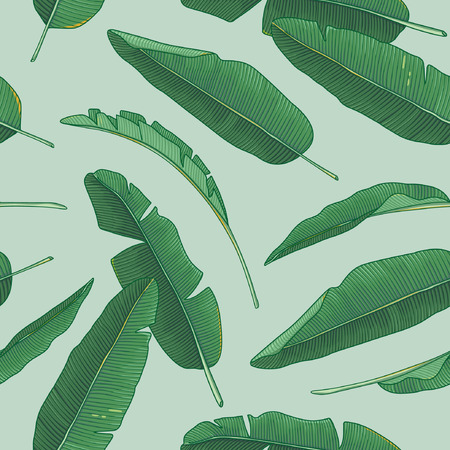 Illustration pour Banana leaves pattern - image libre de droit