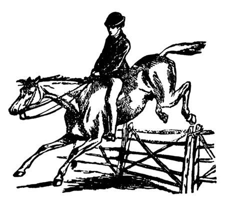 Ilustración de Horse is jumping and crossing a hurdle during run, vintage line drawing or engraving illustration. - Imagen libre de derechos