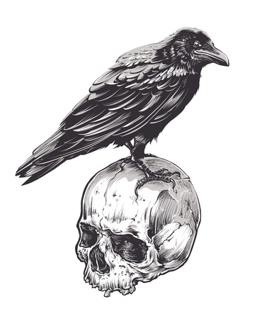 Illustration pour Crow on skull isolated on white. Hand drawn vector art. Sketch vector illustration. - image libre de droit
