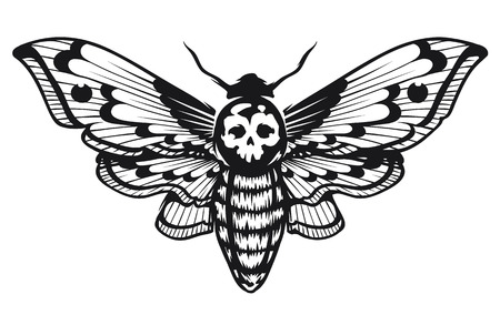 Illustration pour Deaths Head Hawk Moth vector illustration isolated on white. Tattoo style graphic design. Black and white vector art. - image libre de droit