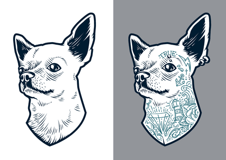 Ilustración de Chihuahua dog art. Vector dog two versions: clean and with old school tattoos and piercing. Little brave hipster pet. - Imagen libre de derechos