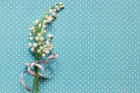 Photo for Lilly of valley on blue dotted pattern background - Royalty Free Image