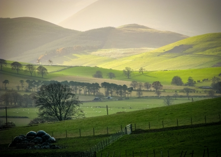 Photo pour Low WInter Sun On Rural Hills In The Scottish Borders - image libre de droit