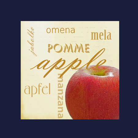 Foto de A photograph of an apple framed in dark blue surrounded by the word apple in several different languages. - Imagen libre de derechos