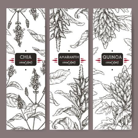 Ilustración de Set of three labels with amaranth, quinoa and chia sketch. Cereal plants collection. - Imagen libre de derechos