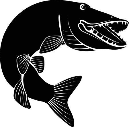 Photo pour Pike fish - clip art illustration on white background. - image libre de droit
