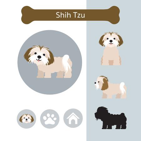 Ilustración de Shih Tzu Dog Breed Infographic, Illustration, Front and Side View, Icon - Imagen libre de derechos