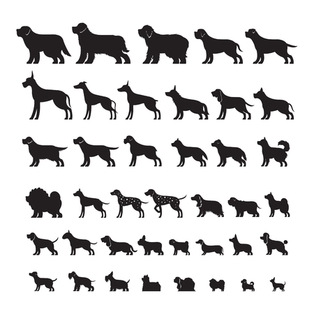 Illustrazione per Dog Breeds, Silhouette Set, Side View, Vector Illustration - Immagini Royalty Free