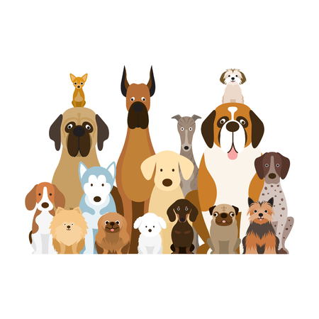 Illustration for Group of Dog Breeds Illustration, Various Size, Front View, Pet - Royalty Free Image