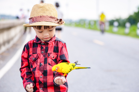 Photo for A bird on children hand in the park. - Royalty Free Image