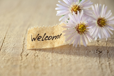 Foto per banner with welcome and  blossoms  - Immagine Royalty Free