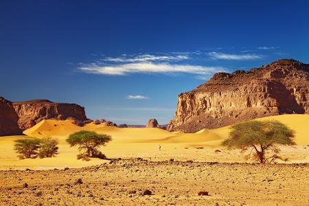 Foto de Desert landscape with dunes and rocks, Sahara Desert, Tadrart, Algeria  - Imagen libre de derechos