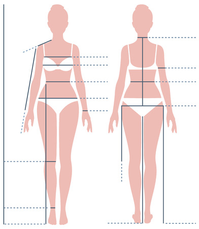 Illustration pour Female body in full length for measuring the size of the figure Stock vector illustration - image libre de droit