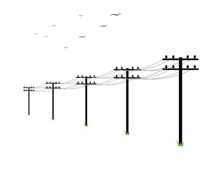 Ilustración de high voltage power lines and birds on white background - Imagen libre de derechos
