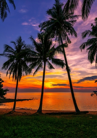 Foto de Tropical beach at sunset - Imagen libre de derechos