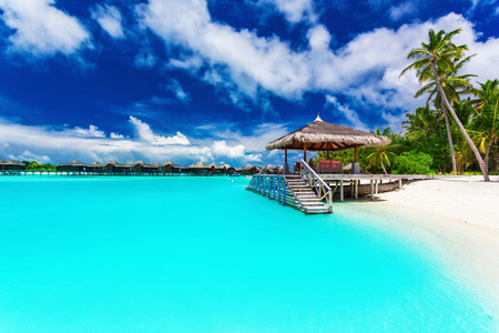 Foto de Jetty and palm trees with steps into amazing tropical blue lagoon - Imagen libre de derechos