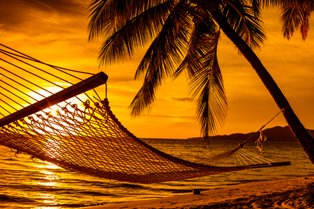 Photo for Silhouette of hammock and palm trees on a tropical beach at sunset - Royalty Free Image