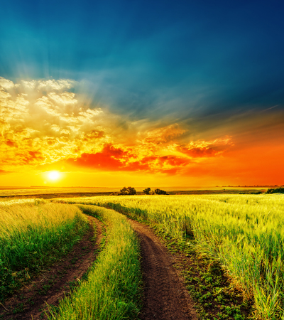 Foto de red sunset over green field with road - Imagen libre de derechos