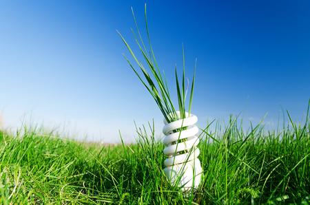 Photo pour energy-efficient spiral bulb in green grass - image libre de droit