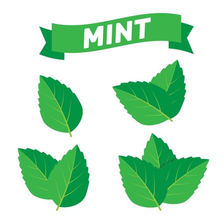 Ilustración de Mint green vector illustration set. Mint logo vector - Imagen libre de derechos