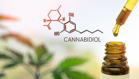 Photo pour CBD Cannabidiol in pipette against Hemp plant with chemical molecule - image libre de droit
