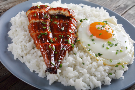 Foto de grilled unagi or eel with tare sauce sprinkled with chopped chives served with rice and fried egg on plate with chopsticks and tare sauce at background, asian cuisine, view from above, close-up - Imagen libre de derechos
