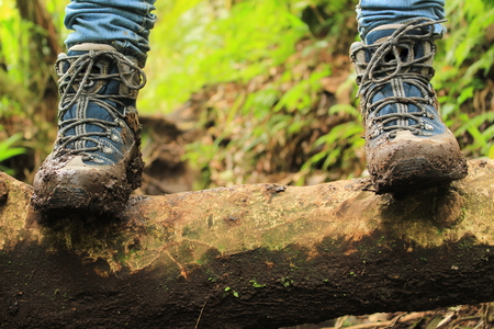 Photo for Detail of muddy boots in the way to the Lost three waterfalls hike in the highlands close to boquete, Panama. - Royalty Free Image