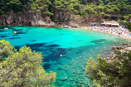 Photo for Crystal waters close to the beautiful beach of Aiguablava in Begur village, Mediterranean sea, Catalonia, Spain. - Royalty Free Image