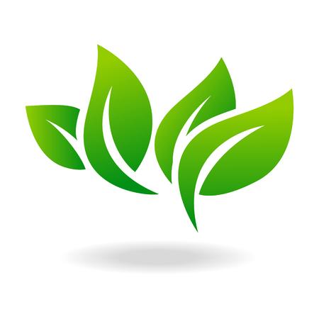Illustration for Leaf shape icon and green leaf emblem. Ecology green leaf organic environment, tree leaf . - Royalty Free Image