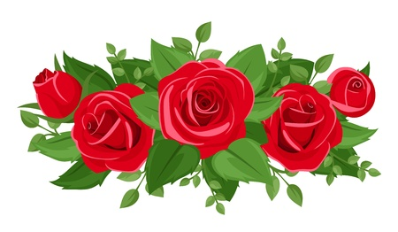 Red roses rosebuds and leaves. Vector illustration. mural