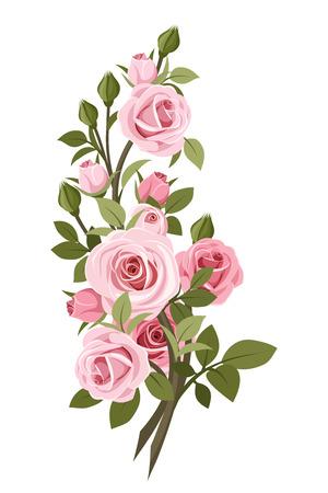 Illustration pour Vintage pink roses branch  Vector illustration  - image libre de droit