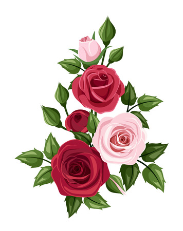 Illustration pour Red and pink roses  Vector illustration - image libre de droit