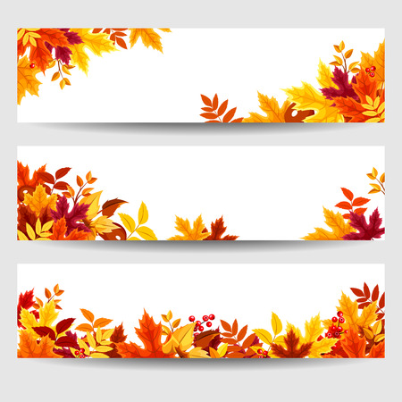 Vector banners with colorful autumn leaves.