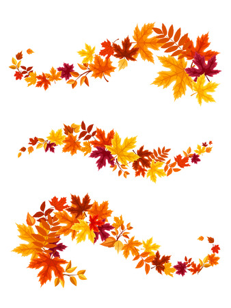 Illustration for Autumn colorful leaves. Vector illustration. - Royalty Free Image