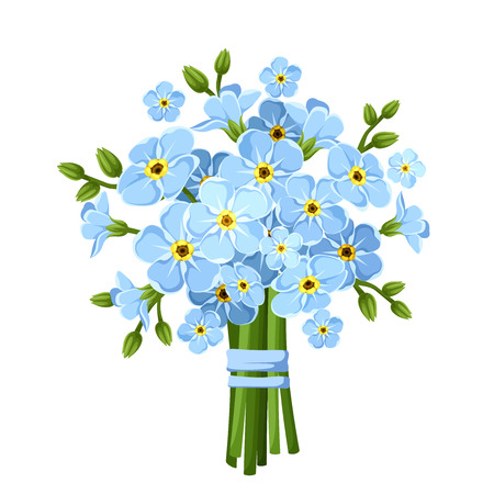 Illustration for Bouquet of blue forget-me-not flowers. Vector illustration. - Royalty Free Image